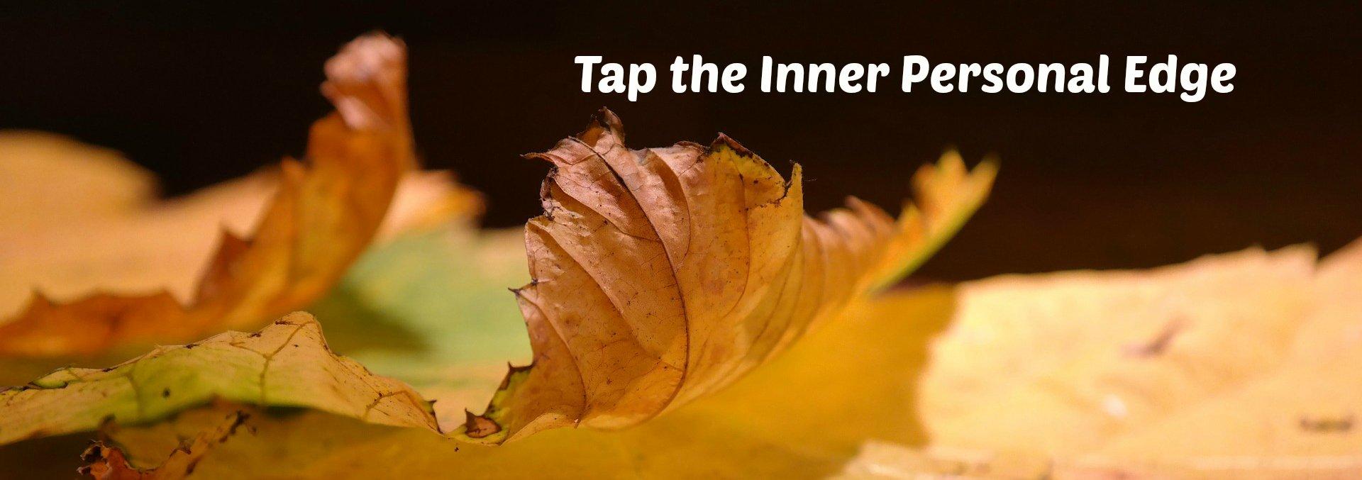 Edge of fall tree leaf, illustrating the theme,